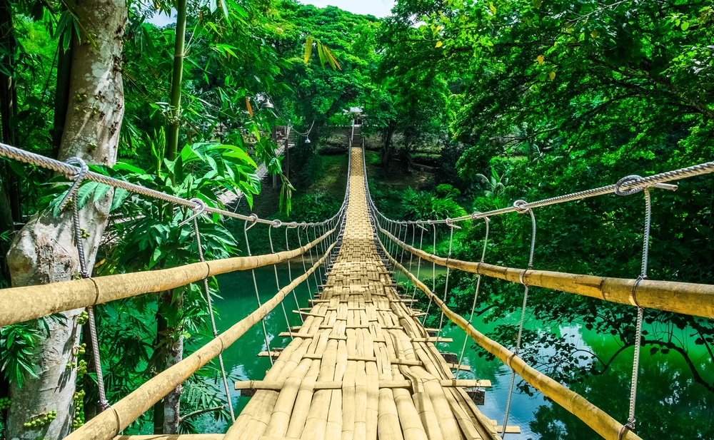 Bamboo-Hanging-Bridge.jpg